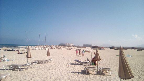 Flag Beach: OMBRELLONI