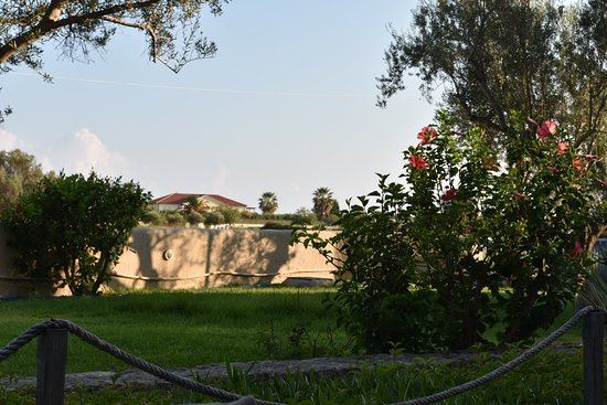 Avithos Resort: DSC_5359_large.jpg