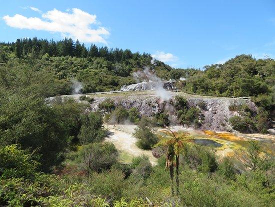 Taupo District, นิวซีแลนด์: orakei korako