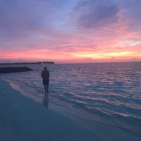 Summer Island Maldives: photo0.jpg