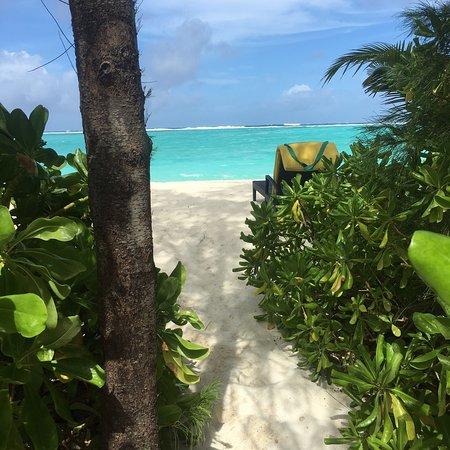 Summer Island Maldives: photo1.jpg