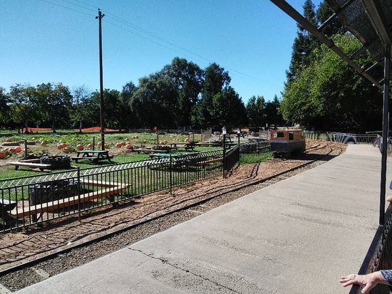 Wheatland, Califórnia: Bishop's Pumpkin Farm