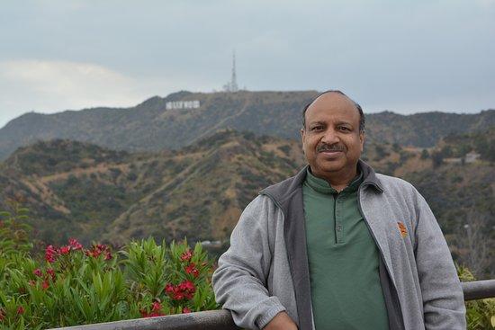 hollywood sign ロサンゼルス ハリウッドサインの写真 トリップ