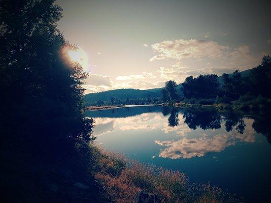 Κίνγκστον, Αϊντάχο: Couer d'Alene River runs right through our campground.