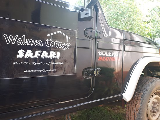 Walawa Cottage Accommodation, Safari & Taxi Service