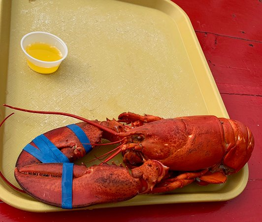 Kittery Point, ME: 2.5 pounds of lobster.