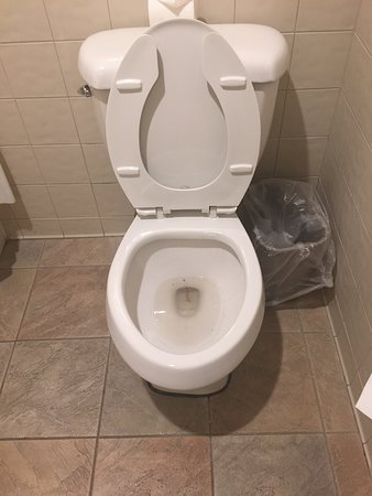 Carrollton, KY: Toilet was dirty when we arrived!