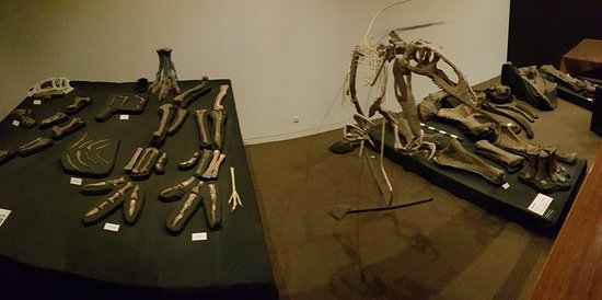 Australian Age of Dinosaurs Image