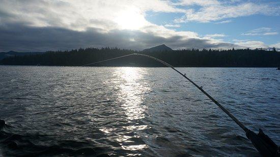 Clover Pass Resort: on the water fishing