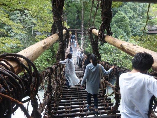 Iya Kazura Bridge: 手すりにつかまりながら。