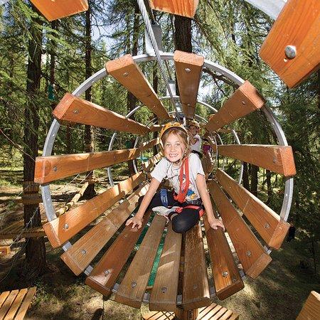 Ameno, Italien: Adventure Park Le Pigne - divertimento per tutti