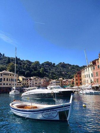Area Marina Protetta Portofino: Quella volta che volevo fare il riccone a Portofino...