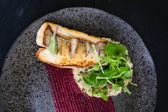 Morska fish & wine restaurant: Restauracja Morska - fot. Karol Kacperski