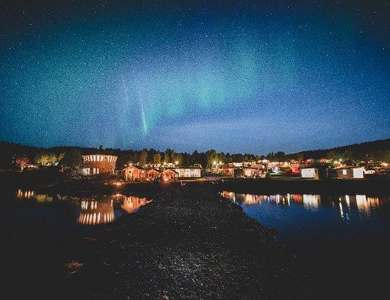 Troms, Norge: Norwegian Wild
