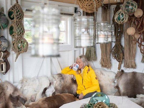 Troms, Norwegia: Norwegian Wild