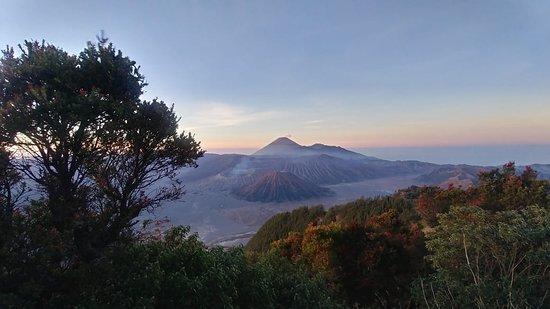 Tengger Caldera, อินโดนีเซีย: Great view of bromo tengger semeru