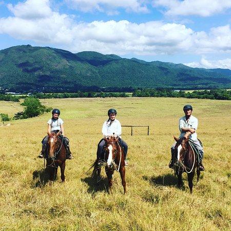 Tully, Αυστραλία: Enjoying the views from Reinsdown farm