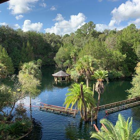 Cedar Lakes Woods And Gardens: photo6.jpg