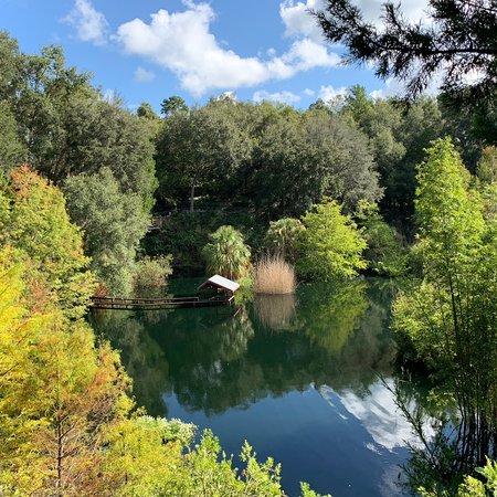Cedar Lakes Woods And Gardens: photo8.jpg