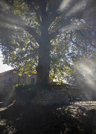 Καπέσοβο, Ελλάδα: Kapesovo village square. You will find us here.
