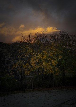 Καπέσοβο, Ελλάδα: Fall colours
