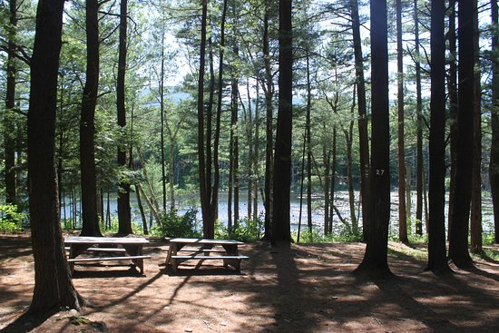 Purling, Estado de Nueva York: Sleep under the stars in our lakeside tenting area