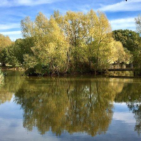 Henfield, UK: photo1.jpg