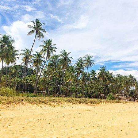 Uppuveli, سريلانكا: photo0.jpg