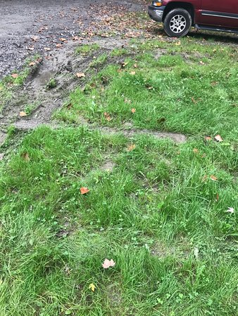 Williamsport, Maryland: Muddy saturated mess.