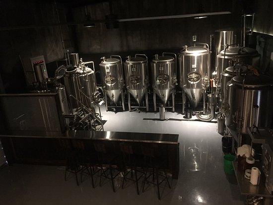 Avid Brew Company