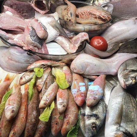 Excellent Sea Food