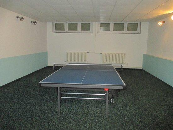 Alexisbad, Germany: Tischtennis