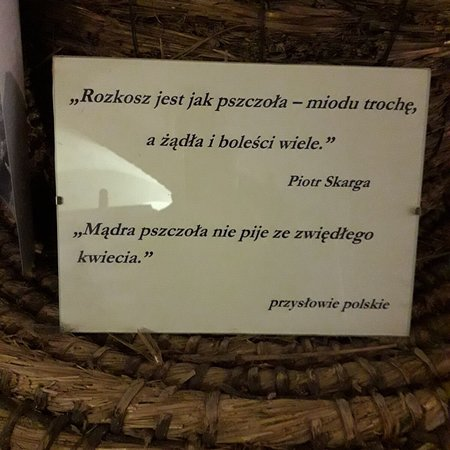 Golub-Dobrzyn Foto