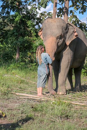 Best place to go for visiting elephants