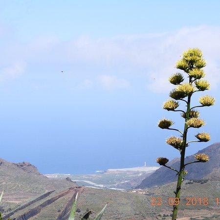 Masca, إسبانيا: Var på en fantastisk vandring vid Masca på Teneriffa  den 22 september -18 mäktigt och otroligt 