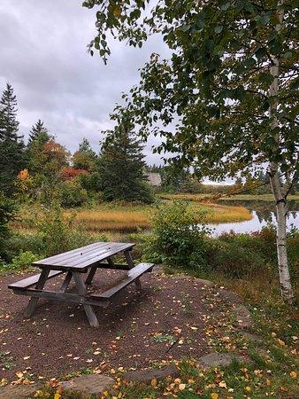 Shemogue, كندا: Garten