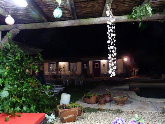 Longueira, Portugal: Pormenor do jardim vista quartos ao fundo