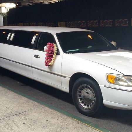 Alpha Limousine Service