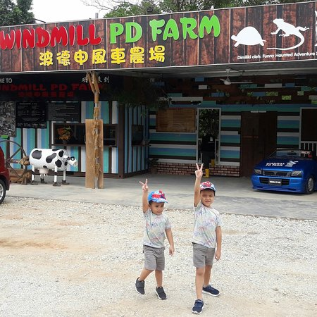 ‪‪Windmill PD Farm‬: Top Attractions in Port Dickson-Windmill Port Dickson Farm 4 in 1 . Petting zoo , cat house, ant‬
