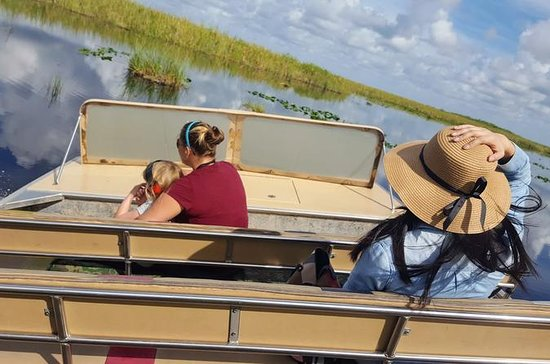 Full-Day Everglades Naturalist-Led Adventure: Cruise, Hike, and...