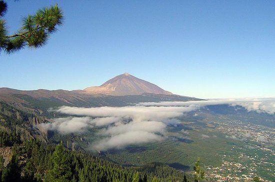 Private Tour: Essential Tenerife and...