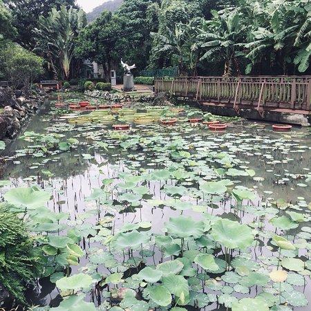 Zhi De Park Foto