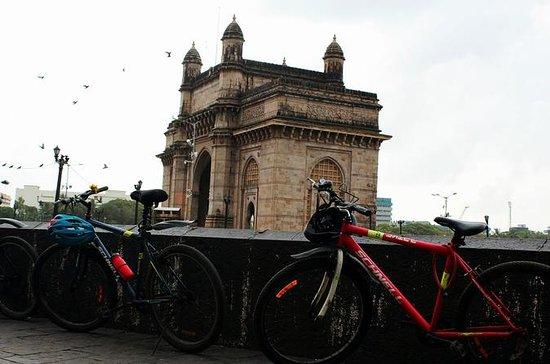 Tour en bicicleta por la mañana de...