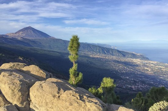 SHORE EXPERIENCE: TEIDE and NORTH, an...