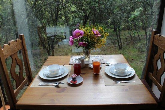 Retuerta del Bullaque, Spain: No pierdes el contacto salvaje con el bosque desde tu mesa