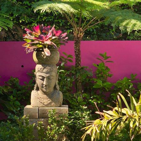 Trafalgar, Sudáfrica: Garden courtyard off yoga studio