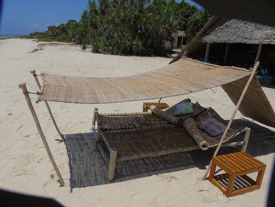 Kutani, Tanzania: Wonderful beach beds and canopies if wanted !!