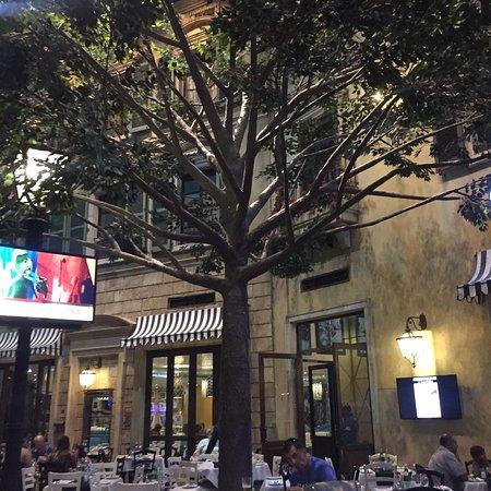 Montecasino: photo4.jpg