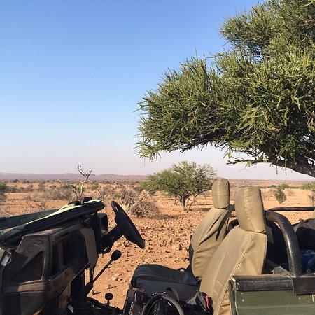 Northern Tuli Game Reserve, Botswana: photo3.jpg