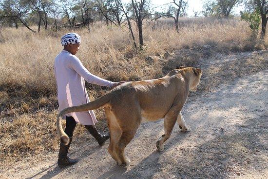 Polokwane, Südafrika: Awe Inspiring